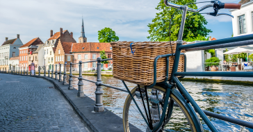 Bus and cycling tours through Bruges and surroundings